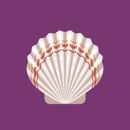 Seashell scallop flat vector illustration on violet background
