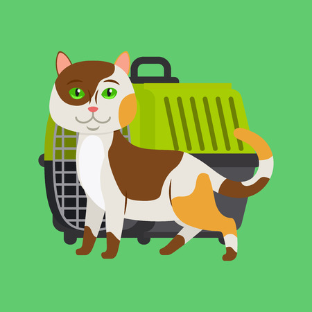 Cartoon cat and cat carrier on green. Vector illustration