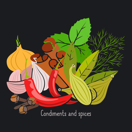 Condiments and spices vector illustration on the dark background Illustration