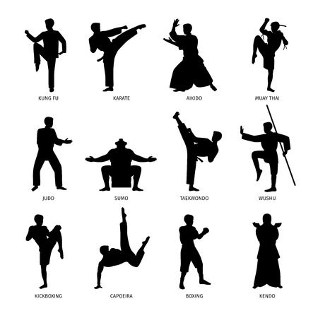 Asian martial arts, isolated vector black silhouettes. Karate and kung fu, sumo and boxing