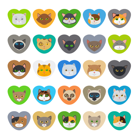 pussy hair: Cat heads or cute cat faces in heart shape vector illustration
