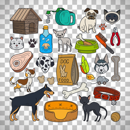 Vector hand drawn pets. Cats and dogs isolated on transparent background