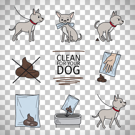 siting: Clean up after your dog information vector illustration isolated on transparent background Illustration