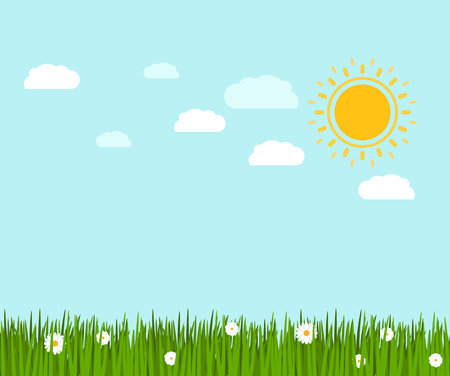Spring green grass and flowers with chamomile landscape, vector illustration Illustration