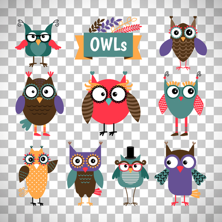 Owl coloured icons set isolated on transparent background. Vector illustration
