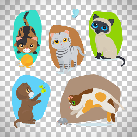Vector cute cats illustration set isolated on transparent background