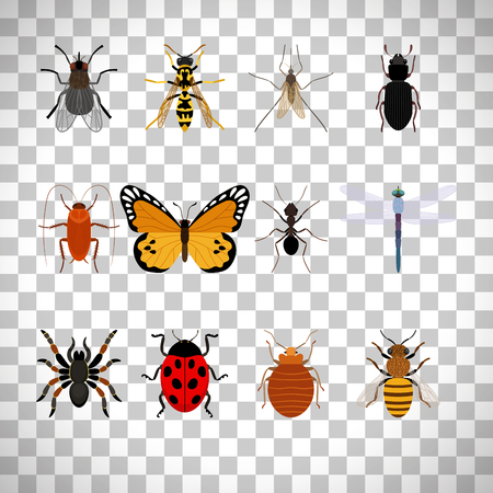 ladybird: Insects icons set isolated on transparent background.