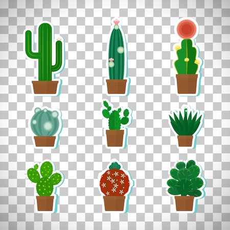Cactus icons set isolated on transparent background.