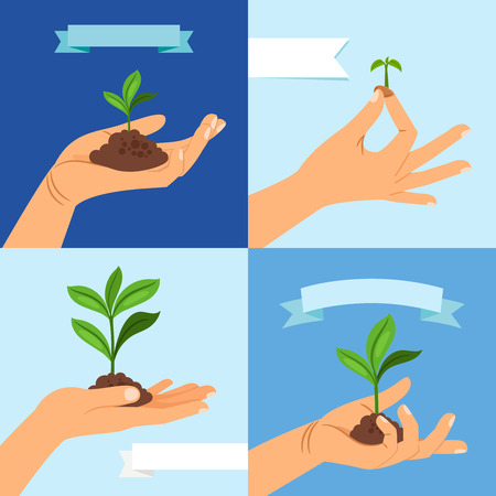 Sprout or seedling. Vernal plant with leaves and soil in human hand vector illustration Illustration