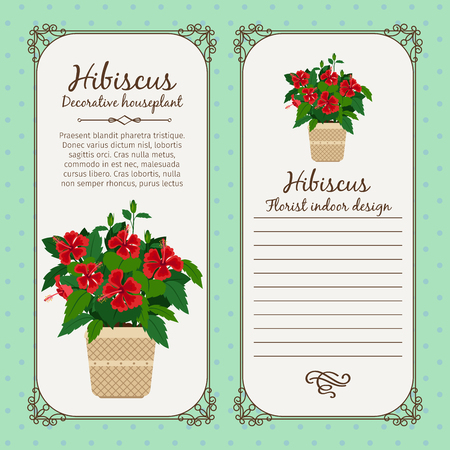 Vintage label template with decorative hibiscus plant in pot, vector illustration Illustration