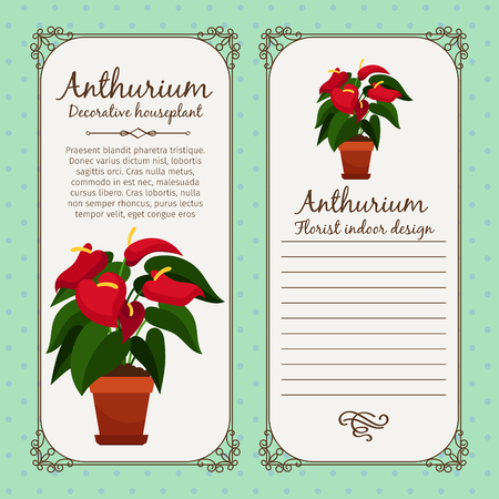 Vintage label with anthurium plant
