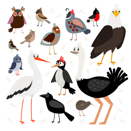 Birds collection isolated on white background Illustration