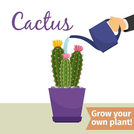 Hand watering cactus plant Ilustração