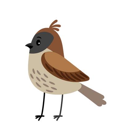 Sparrow funny cartoon bird vector illustration Illustration
