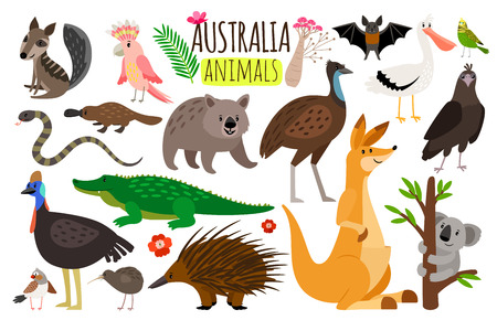 Australian animals. Vector animal icons of Australia, kangaroo and koala, wombat and ostrich emu 版權商用圖片 - 98619658