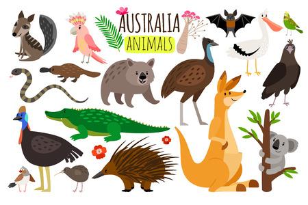 Australische dieren. Vector dierlijke pictogrammen van Australië, kangoeroe en koala, wombat en struisvogelemoe Stockfoto - 98619658