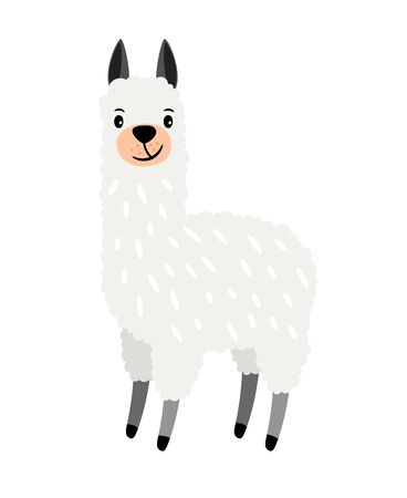 Cute alpaca grey cartoon animal icon on white background, vector illustration