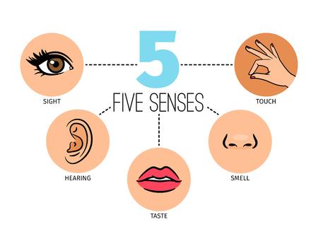 Cinco sentimientos humanos. Boca o labios, manos y nariz, iconos de ojos y oídos, sentidos de la vista y el olfato, el tacto, el oído y el gusto Foto de archivo