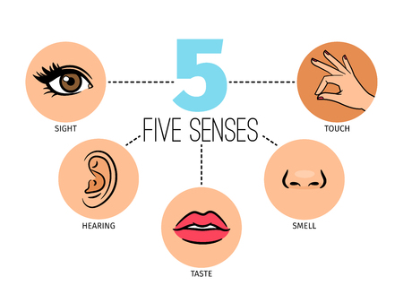 Five human feelings. Mouth or lips, hand and nose, eye and ear icons, sight and smell, touch, hearing and taste senses 스톡 콘텐츠