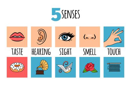 Ilustraciones de cinco sentidos
