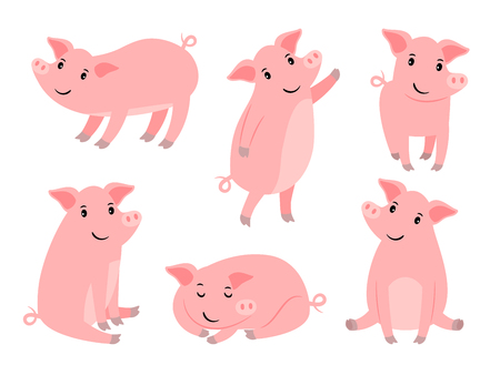 Little piggy character. Cartoon funny pink pig boy isolated on white background, cute piglet for christmas vector illustration