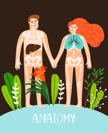 People anatomy poster. Human body systems image, male and female anatomy organs and skeleton vector illustration Illustration