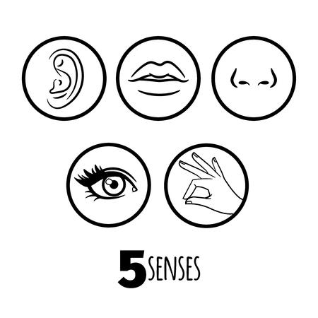 Fünf Sinne skizzieren Ikonenvektor des Satzes. Abbildung von Mund und Ohr, menschliches Auge und Nase