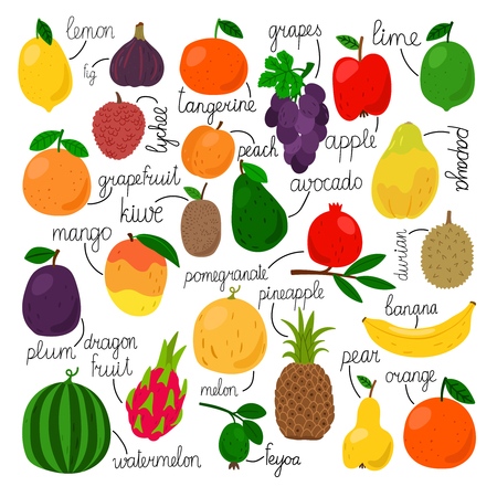 Edible fruits collection. Tropical fruit set with names, juicy pear and peach, pineapple and orange, garnet and kiwi isolated