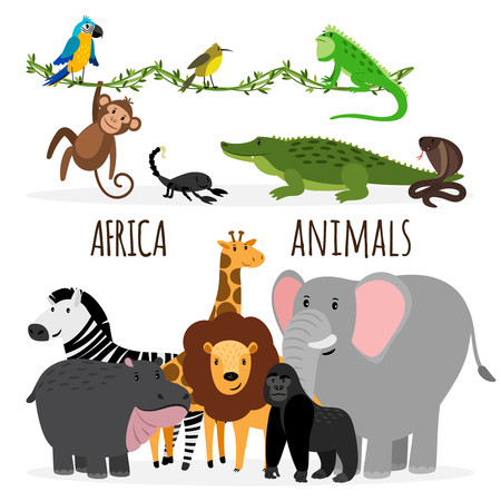 Cartoon exotic Africa animals groups vector isolated on white background Ilustração