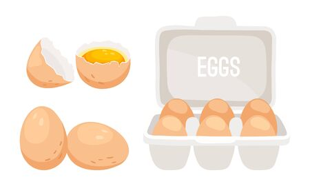 Chicken eggs. Fresh brown eggs in paper box vector illustration Çizim