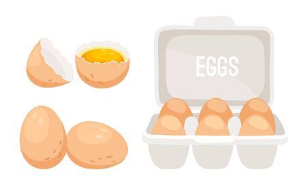 Chicken eggs. Fresh brown eggs in paper box vector illustration Illustration