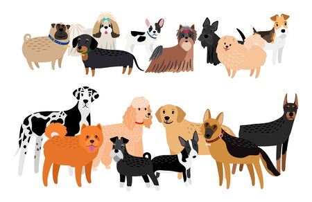 Different dogs breeds image. Vector cartoon group of dogs, cute labrador and yorkshare terrier, friendly doberman and funny chihuahua doggie character collection