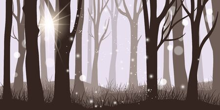 Misty forest background. Horror night and magical lights morning forest landscape, dark fantasy foggy wood, beautiful autumn or summer trunks panorama, vector illustration