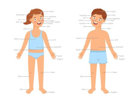 Kids body parts infographic. Vector human body education infographics with cartoon boy and girl children and text labels isolated on white background Stock Illustratie