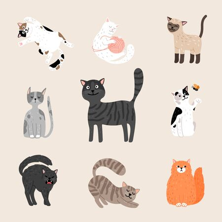 Fluffy funny cats. Cartoon cats drawing, gray purebred and ginger mongrel, playful standing and happy sitting kitten pets characters vector illustration