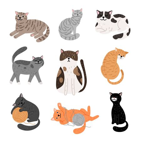 Fanny cartoon cats in different poses. Domestic cats sleeping and walking, sitting and playing, happy and sad kitten icons on white background