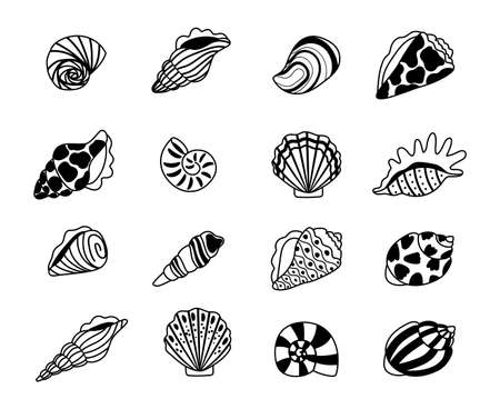 Seashells sketch icons. Sea conchas of clam and oyster sketches, kraken elements of concept of ocean treasure, vector illustration marine shell isolated on white background  イラスト・ベクター素材
