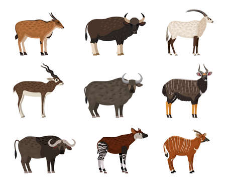 African wildlife characters set. Cartoon wild residents of zoo, image of savannah creatures, vector illustration set of animal isolated on white background