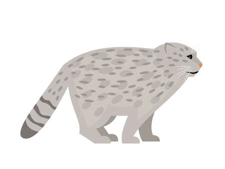 Wild cat with spots. Cartoon cute exotic mammal, fluffy endangered beast of nature, vector illustration of pallas cat isolated on white background Ilustración de vector