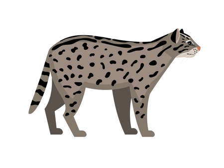 Endangered cat. Cartoon fluffy character of zoo, cute exotic mammal with spots, vector illustration of fishing cat isolated on white background
