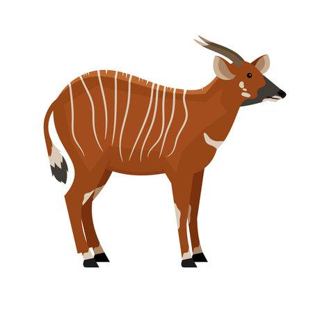 Hoofed animal with horns. Cartoon symbol of hunting, exotic beast of wildlife, vector illustration of eastern bongo isolated on white background