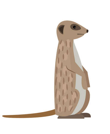 Desert meerkat. Cartoon animal of savanna in funny pose, cute predator of wildlife, vector illustration of exotic character of zoo isolated on white background