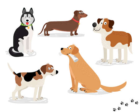Happy dog vector characters on white background. Dogs standing and sitting, holding newspaper.