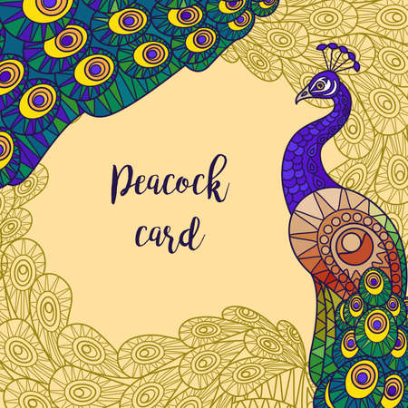 Peacock colorful greeting card design vector illustration