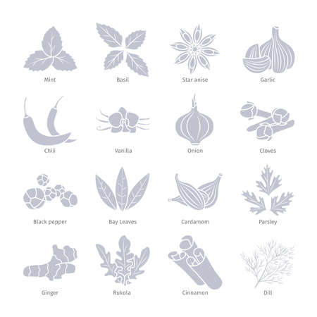 Condiments and spices vector silhouettes set on white