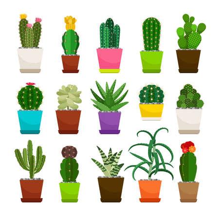 Cactus houseplants in flower pots set Vektorové ilustrace