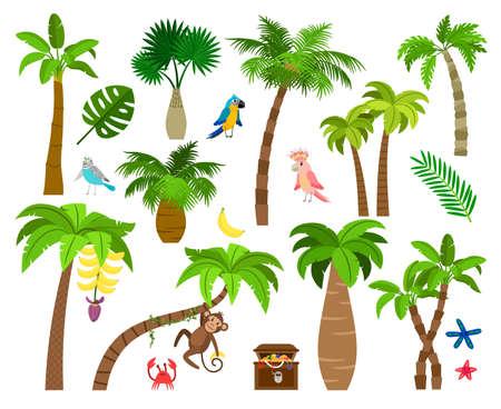 Brazil nature elements Vettoriali