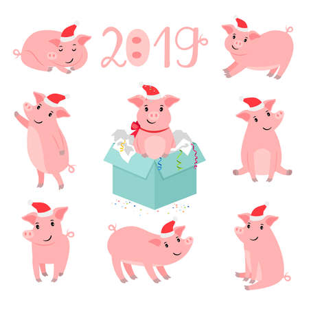 Pig new year character. Christmas pigs portrait vector illustration, winter cute pink pork pet isolated on white background