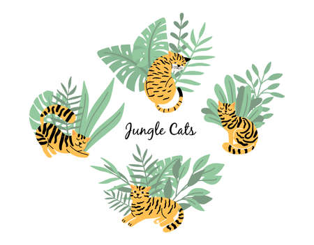 Cats tigers in jungle plants