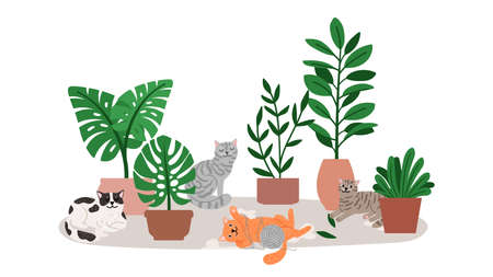 Cat relaxing near home plants Vettoriali